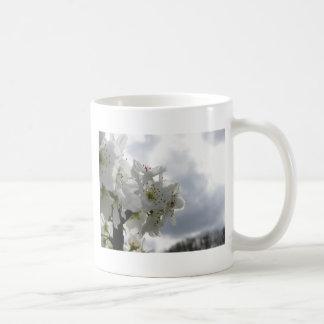 Taza De Café Peral floreciente contra el cielo nublado