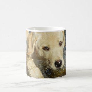 Taza De Café Perrito amarillo del labrador retriever que
