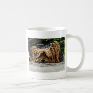 Taza De Café Perrito lindo de Yorkshire