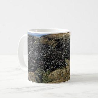 Taza De Café Piscinas de la marea en la cala de Bob