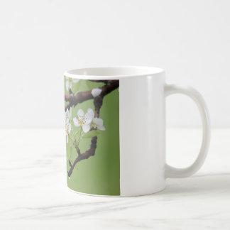 Taza de café:  Placer usted mismo en el señor