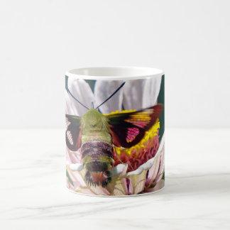 Taza De Café Polilla de colibrí