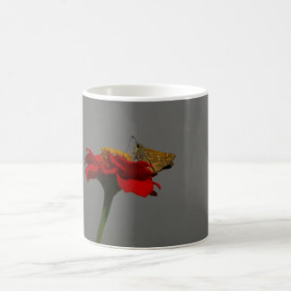 Taza De Café Polillas y Zinnia rojo