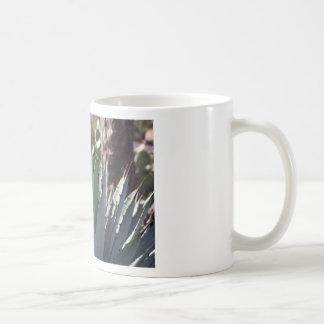 Taza De Café Puntos del agavo