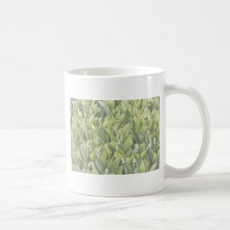 Taza De Café Remiendo de la flor del lirio de los valles en