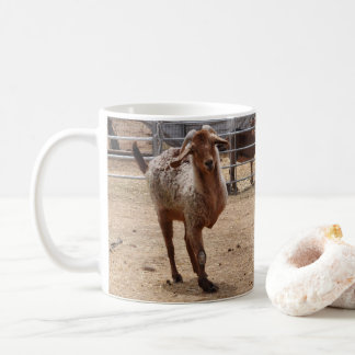 """Taza de café rescatada de la cabra del """"trípode"""""""