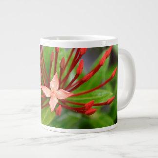 Taza de café roja enorme tropical de Panamá de la