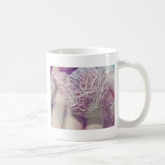 Taza De Café Rosa de desierto