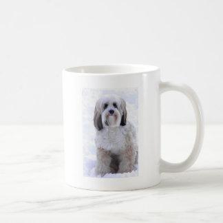 Taza De Café Sable y blanco de Terrier tibetano