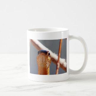 Taza De Café serpiente