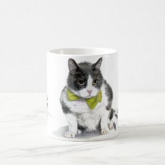 Taza De Café Taza: Felix, el gato, en el mes de mayo