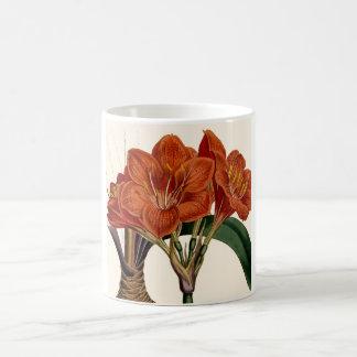 Taza De Café Tote botánico de Curtis de la flor