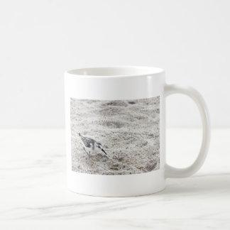 Taza De Café Un pájaro joven del chorlito nevado