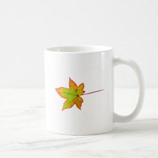 Taza De Café Una hoja de arce colorida en otoño en blanco