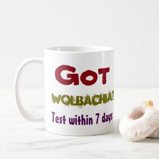 Taza De Café ¿Wolbachia conseguido? Cuidado de los centenares