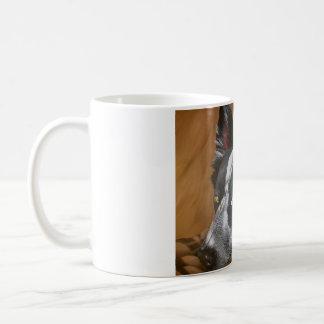 Taza de cerámica del border collie