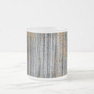 Taza De Cristal Esmerilado Bosque del árbol de abedul