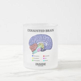 Taza De Cristal Esmerilado Interior agotado del cerebro (humor anatómico del