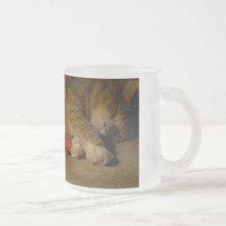 Taza De Cristal Esmerilado Siesta del gato