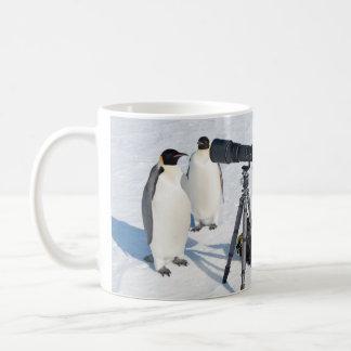 Taza de los paparazzis del pingüino