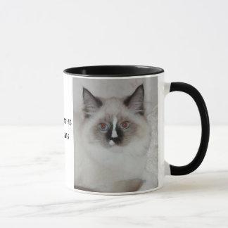 Taza de SiberianCat