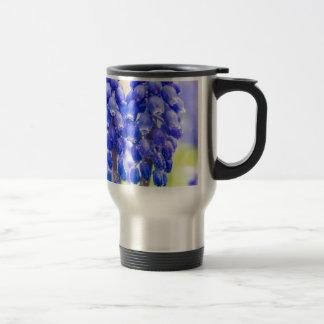 Taza De Viaje Dos jacintos de uva azules en primavera