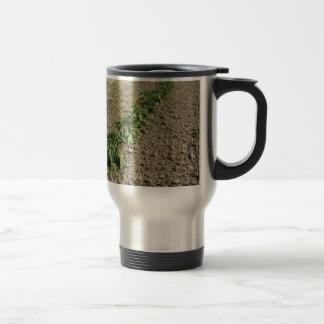 Taza De Viaje Plantas frescas de la albahaca que crecen en el