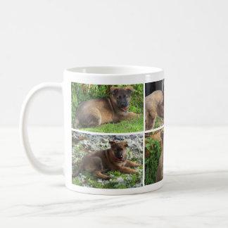 Taza del collage de la foto del perro