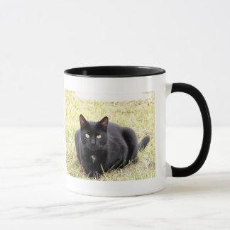 Taza del gato negro