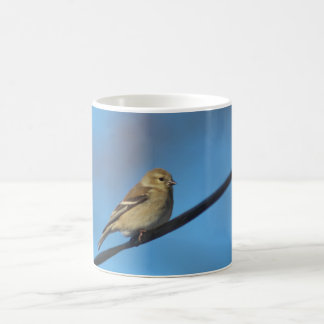 Taza del Goldfinch