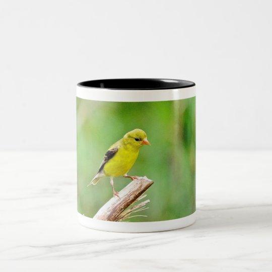 Taza del Goldfinch
