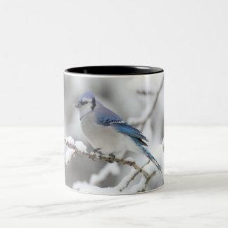 taza del pájaro