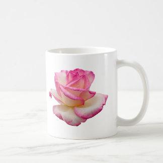 Taza del rosa de té