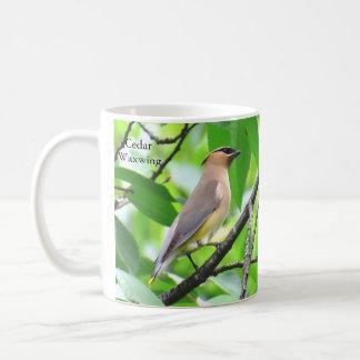 Taza del Waxwing de cedro por BirdingCollectibles