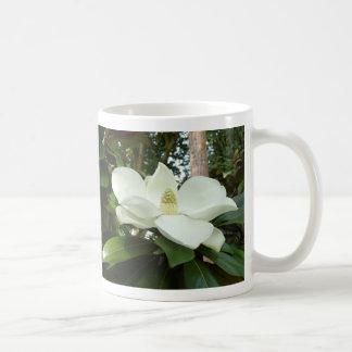 Taza grandiflora de la magnolia