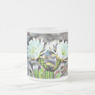 Taza helada flor blanca doble del cactus