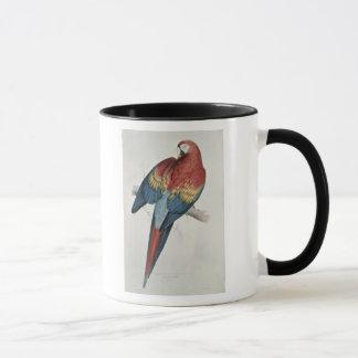 Taza Macaw rojo y amarillo