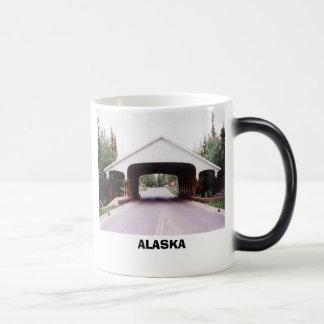 Taza Mágica Puente, ALASKA
