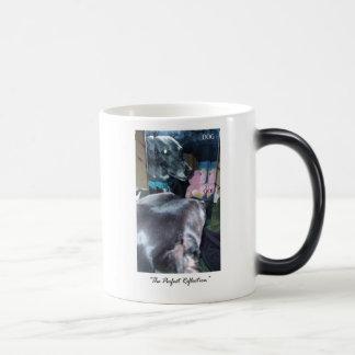 Taza Mágica Reflexión perfecta - dios/perro