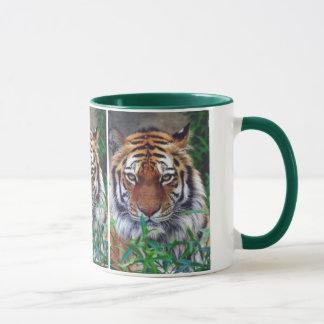 Taza Mirada fija del tigre