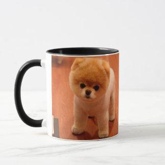 Taza perritos Pomeranian-lindos del perro-pom del