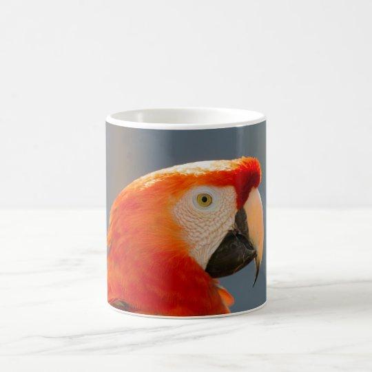 Taza roja de la fauna de la naturaleza del pájaro