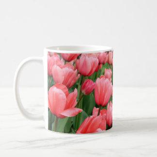 Taza rosada de los tulipanes de la primavera