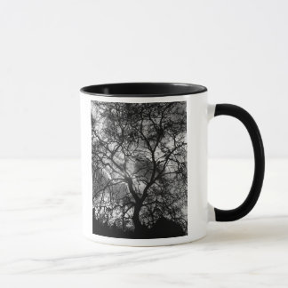 Taza Silueta dramática del árbol
