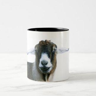 Taza torpe de la cabra