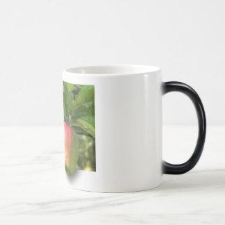 Tazas de café del personalizar