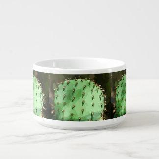 Tazón del cactus del higo chumbo