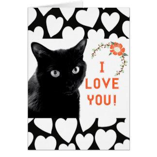"""""""Te amo"""" tarjetas de nota del gato"""
