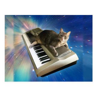 teclado del gato postal