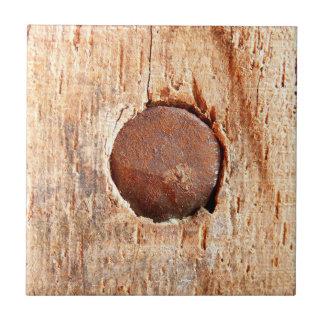 Teja de cerámica de la foto del clavo oxidado